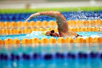 วิธีว่ายน้ำท่าฟรีสไตล์
