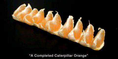 วิธีปอกแปลือกส้ม