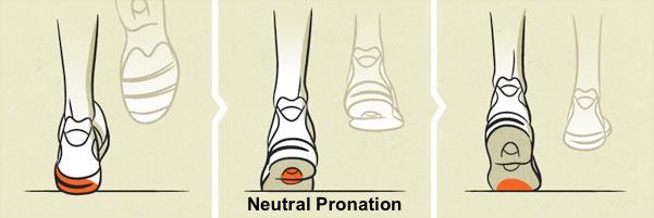 neutral-pronation